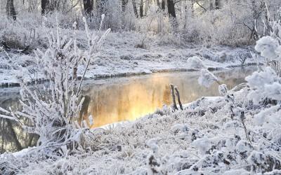 Der Laggerhof ist in der Winterpause!